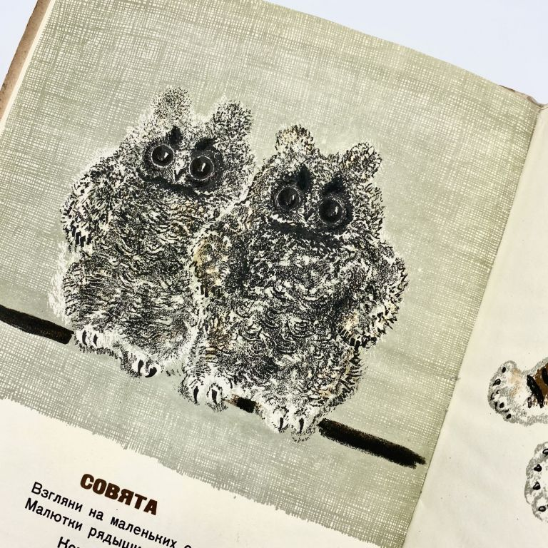 DETKI V KLETKE [ANIMAL BABIES IN A CAGE - BABIES OF THE ZOO]