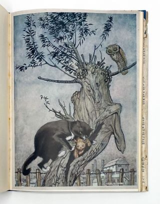 POOR CECCO. Margery Williams Bianco, Arthur Rackham